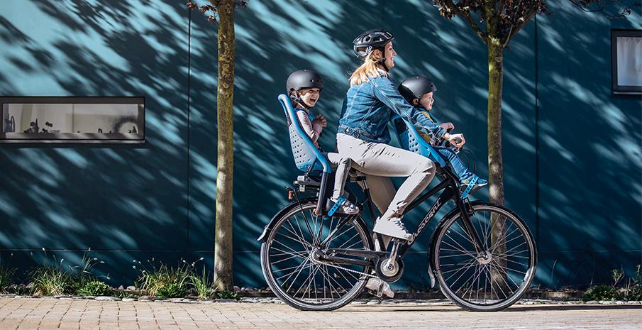 велокресло для детей Thule Yepp Mini на руль сине зеленый арт